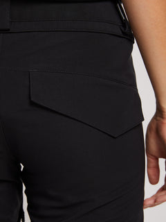 Flor Stretch Gore-tex Pant In Black, Second Alternate View
