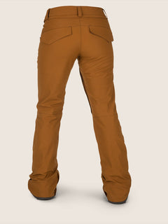 Flor Stretch Gore-tex Pant In Copper, Back View