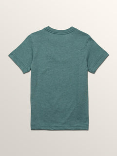 Little Boys Line Tone Short Sleeve Tee In Pine, Back View