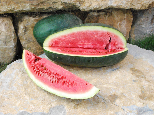 Ancient watermelon image####