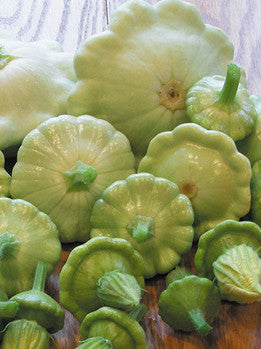Benning's Green Tint patty pan image####