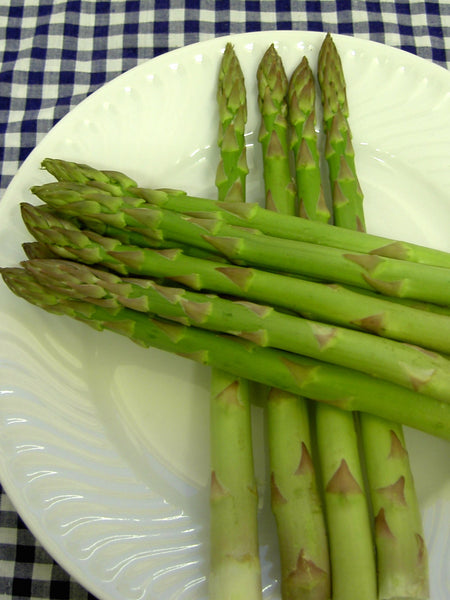 Asparagus Connovers Colossal 100 Seeds Kings Seeds
