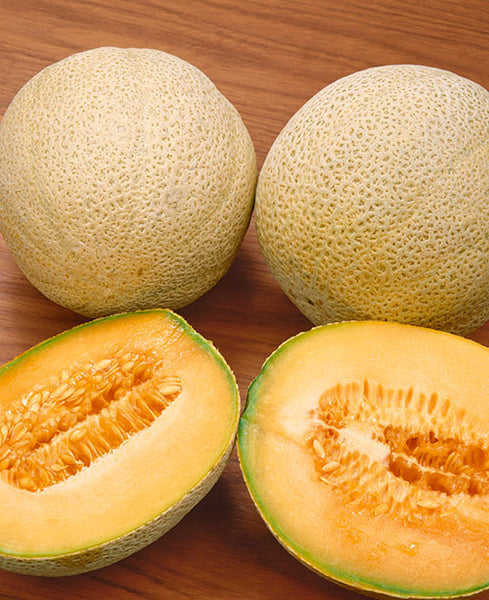 Honey Rock melon image####
