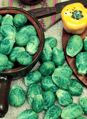 Long Island Improved brussels sprouts image####