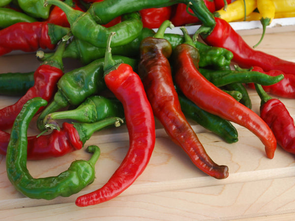 Maule's Red Hot pepper, cayenne image####