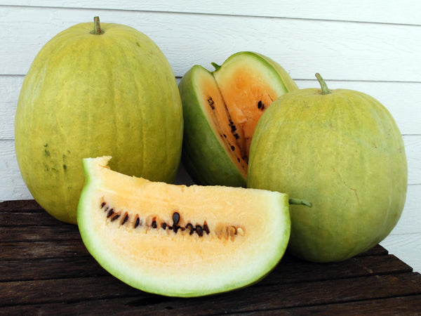 Missouri Heirloom watermelon image####
