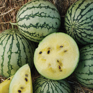 Petite Yellow watermelon image####