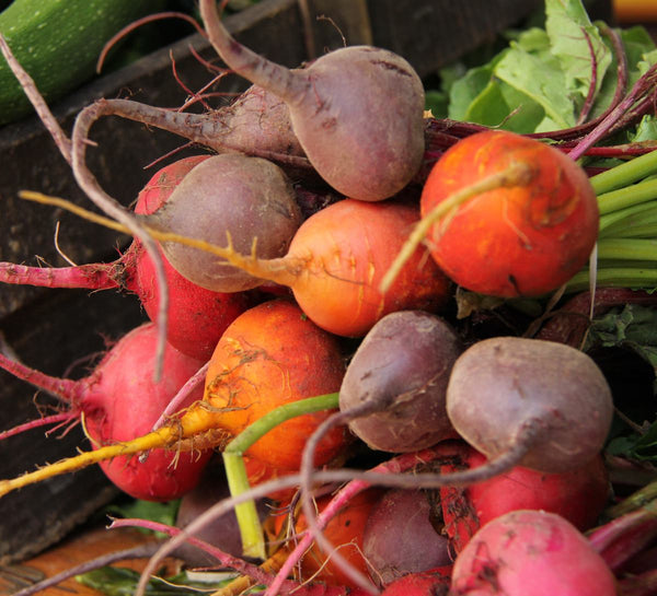 Rainbow Mix beet image##Photo: Hutchinson Farm, mix simulation, results vary.##http://www.hutchinsonfarm.ca/