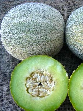 Rocky Ford Green Flesh melon image####