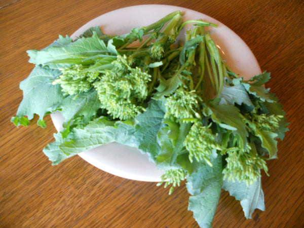 Sorrento broccoli raab image####
