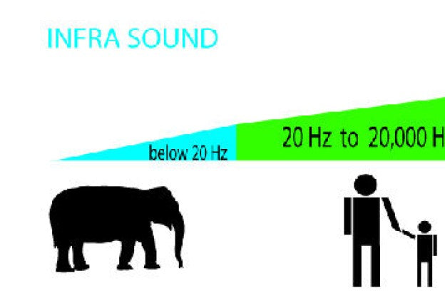 Bigfoot and Infrasound?