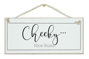 Cheeky...nice bum loo sign