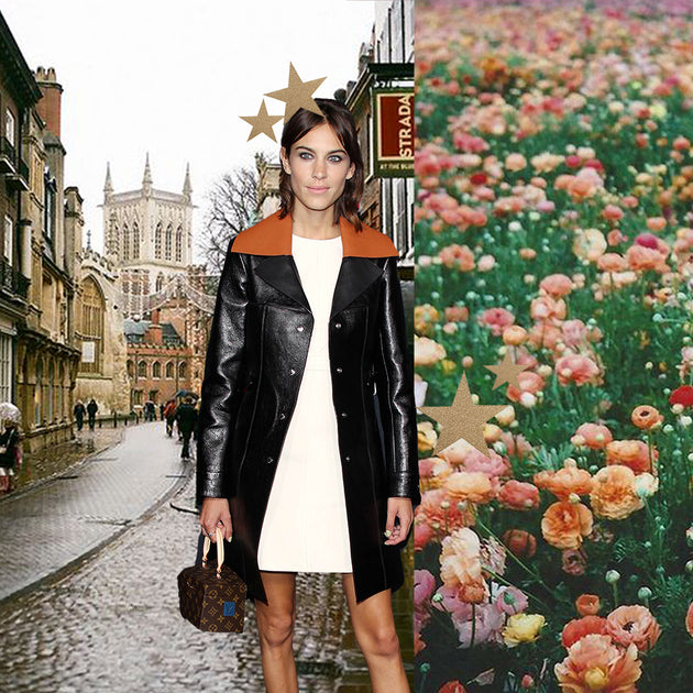 0cf4b510511110 Alexa Chung's Style Evolution Over The Years – The Blonde Republic