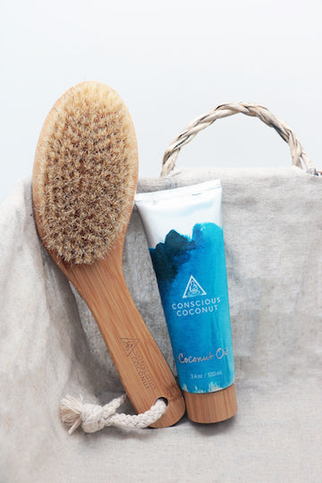 Travel Dry Brush Bundle