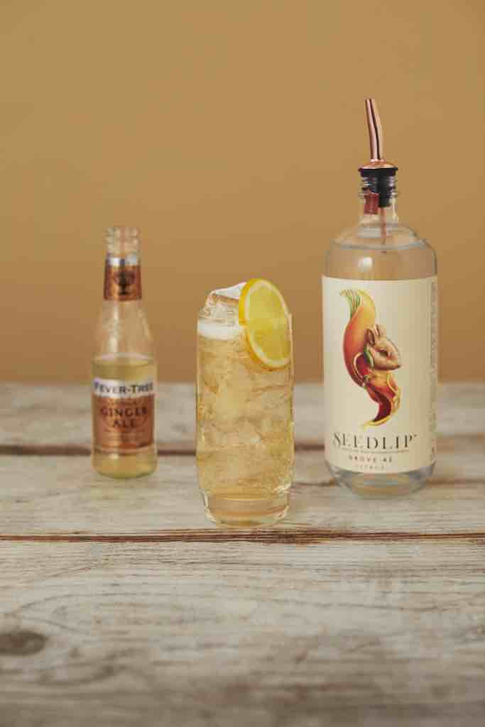 Distilled Non-Alcoholic Spirits