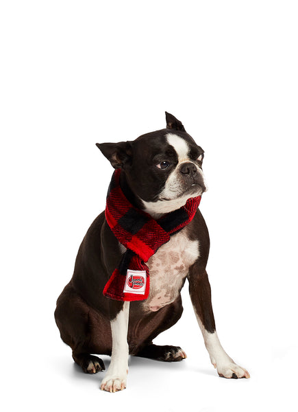 Christmas Matching Family Pajamas - Red Buffalo - Scarf - Pet