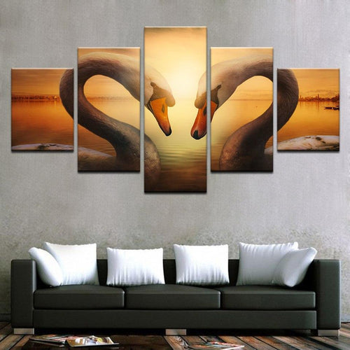 Swans Lovers Sunset View