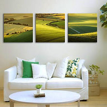Load image into Gallery viewer, Green Hill Landscape