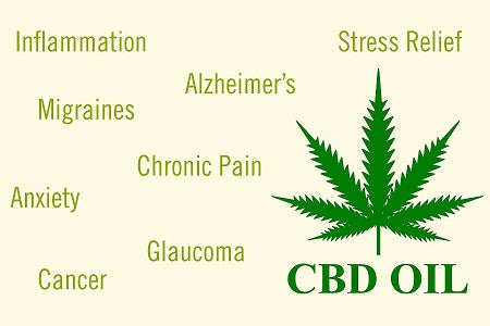CBD Oil Benefits | Why Choose CBD Oil for Anxiety? – White Tiger CBD