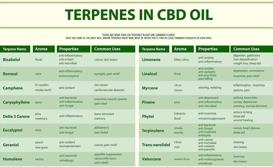 table illustrating the properties and uses answering the question what do terpenes do