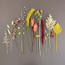 Autumnal Dried Flowers
