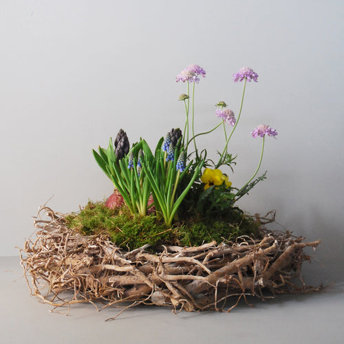 Large Planted Spring Nest Basket