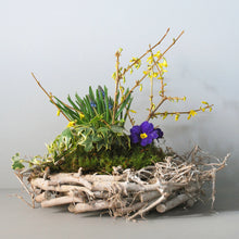 Medium Spring Nest Basket