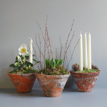 Trio of Pots