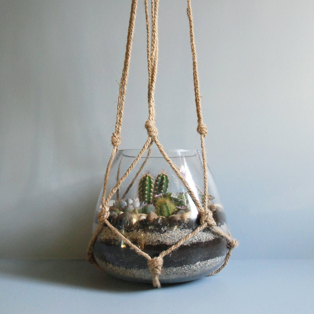 Large Hanging Glass Terrarium