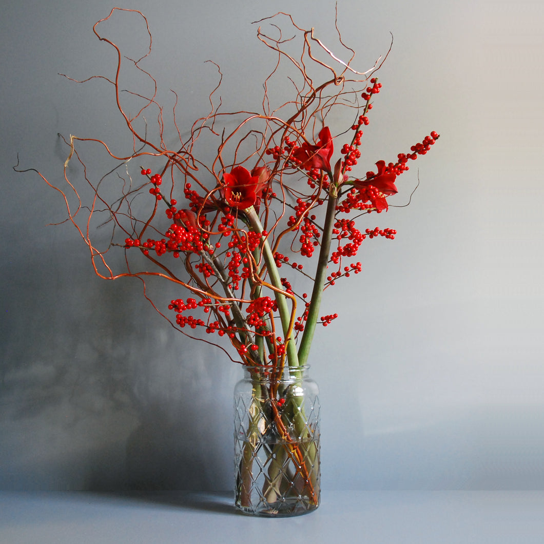 Red Amaryllis Vase