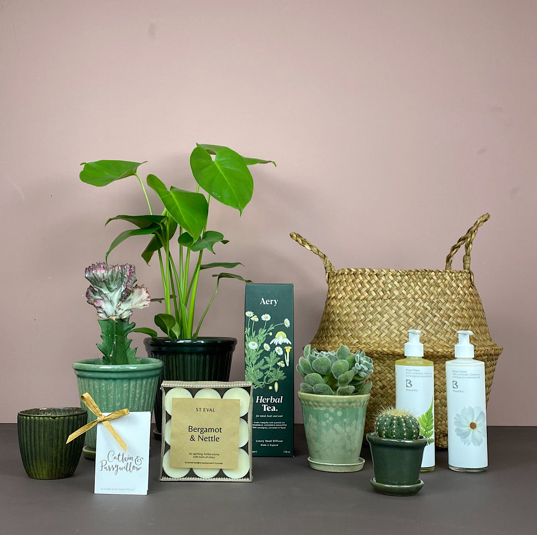The Ultimate Plant Lover's Gift Belly Basket (L)