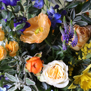A bright, blue & beautiful bouquet with a golden touch, guaranteed to make an impact on Mother's Day. Created with golden garden roses mixed with a Spring selection of muscari, narcissi, iris and ranunculus along with delphiniums, buttercups, Icelandic poppies, sandersonia & mimosa.