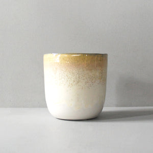Two-Tone White Ceramic Plant Pot