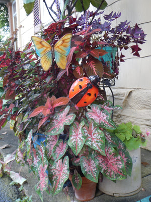 Brilliant Butterfly Metal Art Garden Stake