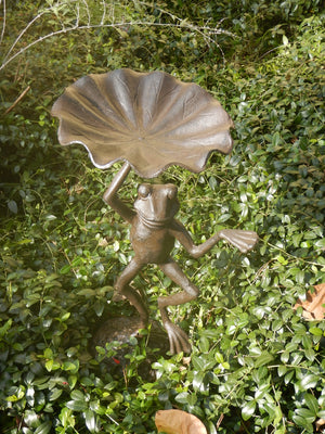 Fun and Funky Dancing Frog Birdbath