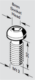 Connection Screw; M12 x 30; 8981021301
