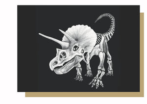Triceratops Dinosaur Skeleton Greetings Card