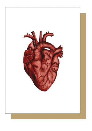 Anatomical Heart Alternative Greetings Card . - Textured Paper