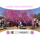 confetti cannons pink same day shipping