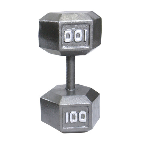 100lbs Hex Dumbbell with Straight Handle