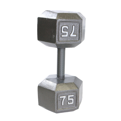 75lbs Hex Dumbbell with Straight Handle