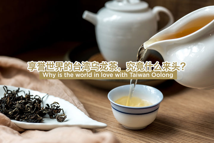 找一款与你气韵相投的台湾乌龙 Taiwan Oolong: Exquisite tea from the beautiful island