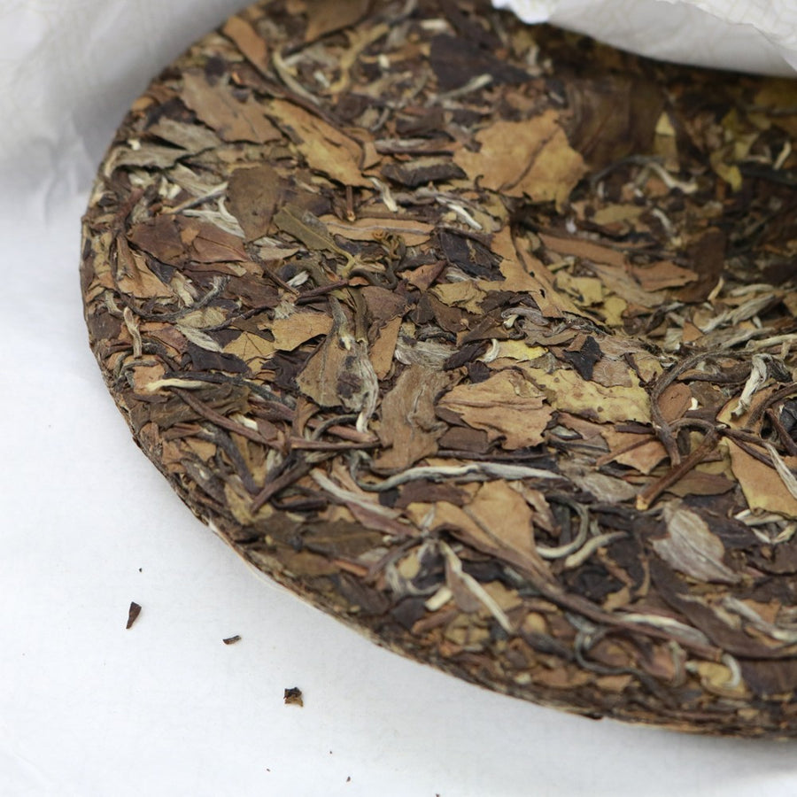 Purple Cane Shou Mei White Tea Year 2016 Fujian (300g)