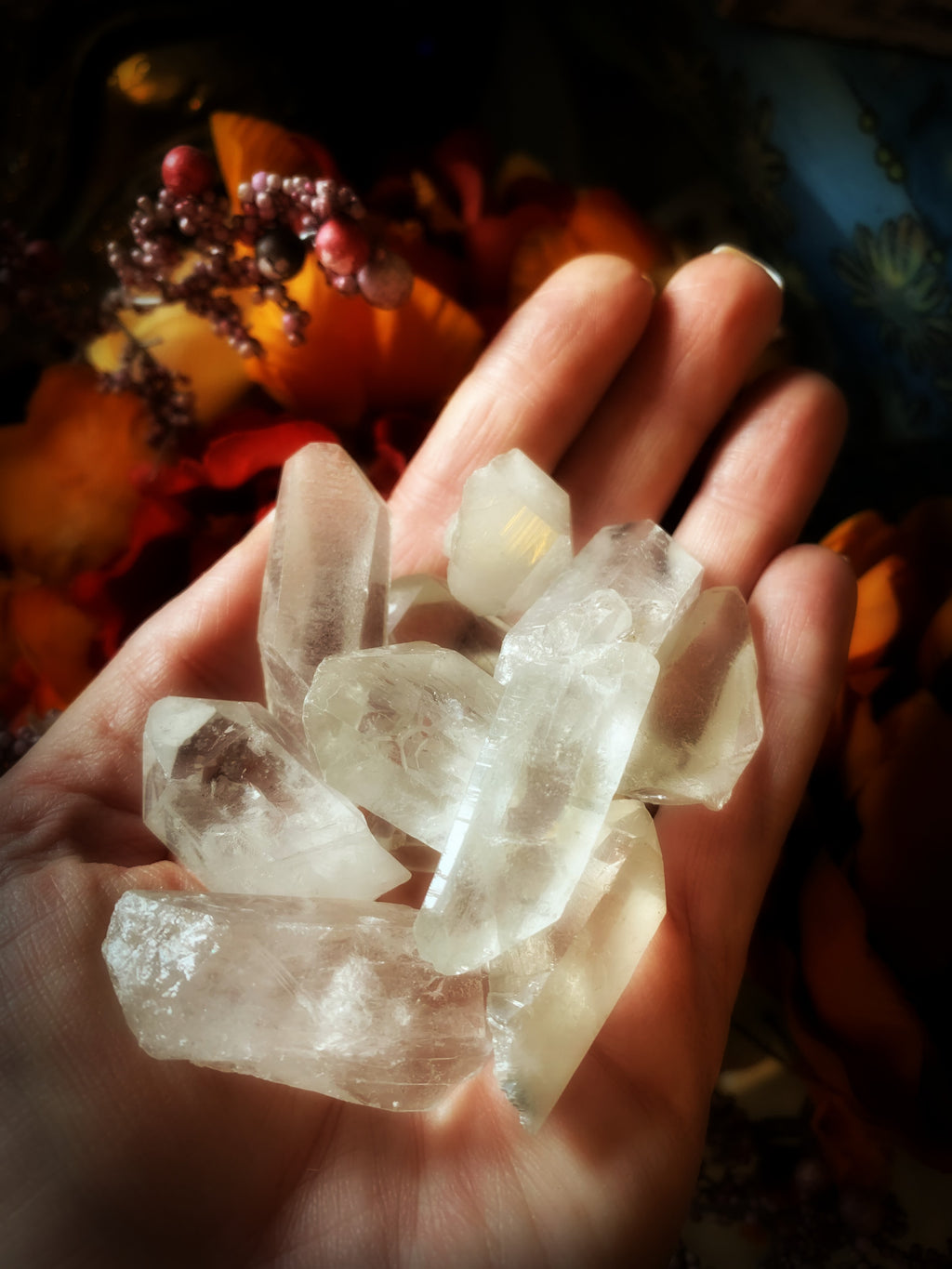 CLEAR QUARTZ POINTS ~  For Amplification of Energy