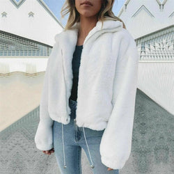 The Best Casual Short Solid Turn-down Collar Jacket Thick Faux Fur Zipper Jacket Teddy Coat Online - Hplify