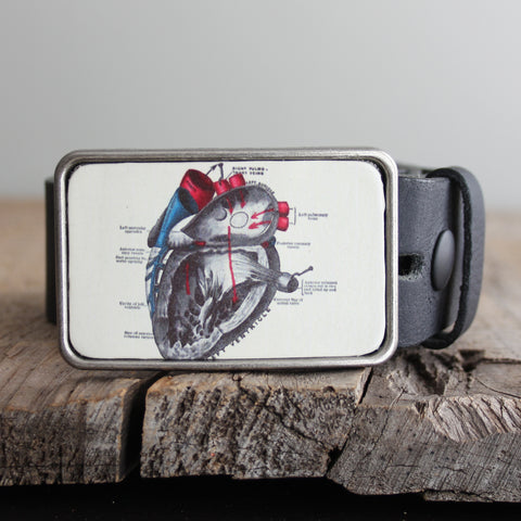 Belt Buckle: Anatomical Heart