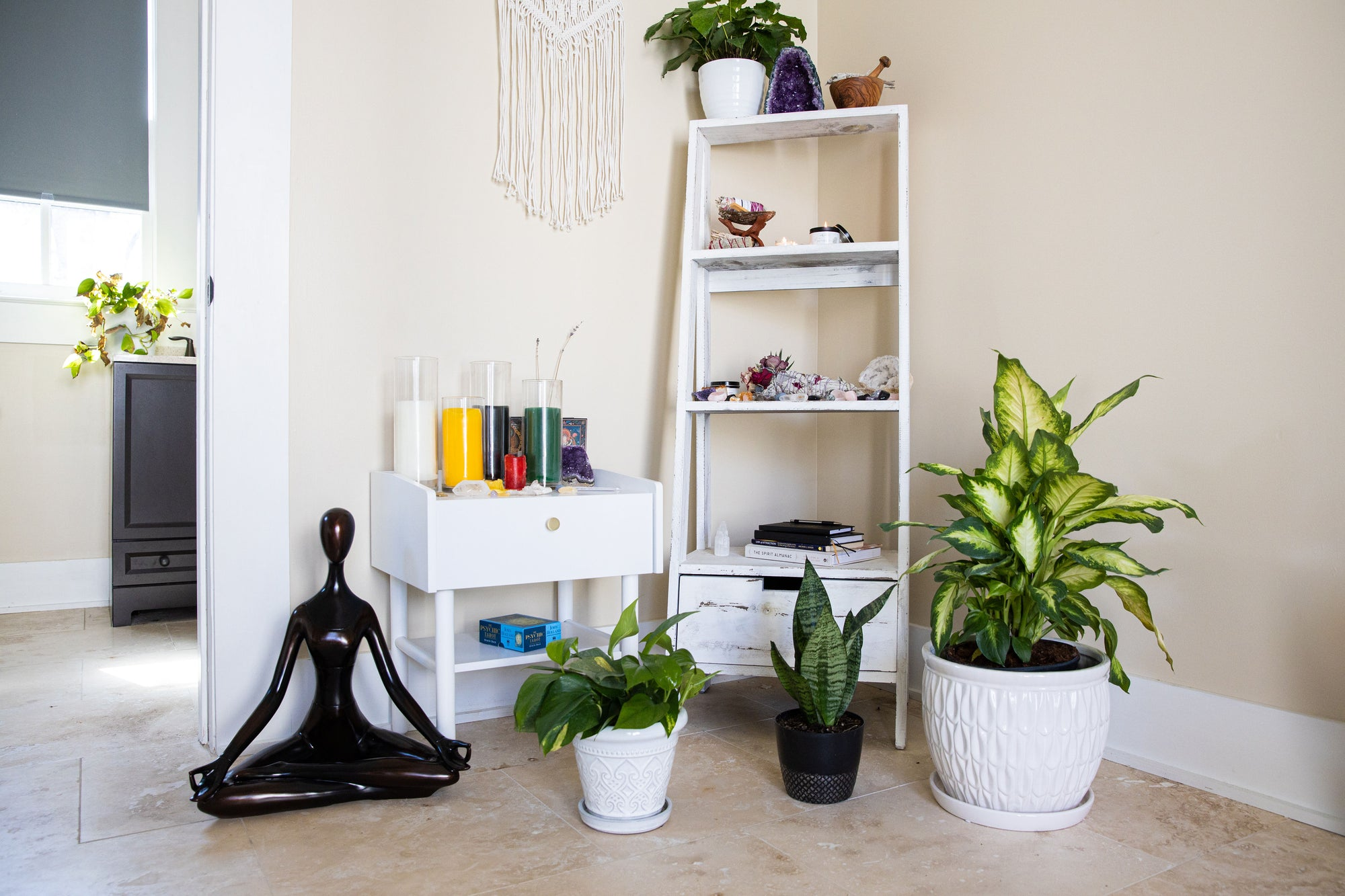 4 Ways Plants Help Make Your Space Better