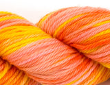 Cascade Yarn - 220 Superwash Sports Multis- 106 Citrus