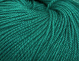 Ella Rae - Cozy Soft Solids - 12 Green - Bonita Patterns