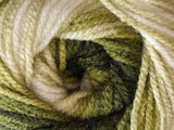 Bonita Yarns - Dream Baby - Dark Green Forest